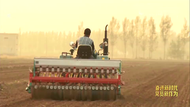 齐鲁先锋丨小农户衔接大农业 武城志远合作社托管土地2.3万亩