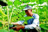 """看看都有谁?50位""""乡村能人""""入选2018年度潍坊乡村之星人选公示名单"""