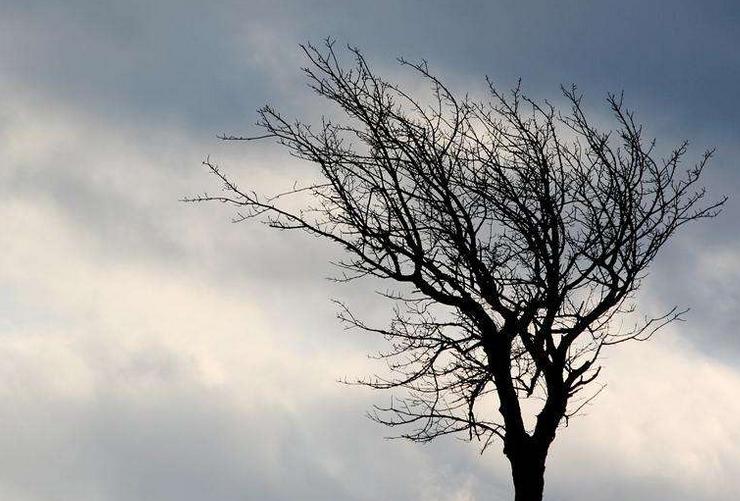 海丽气象吧丨滨州市气象局解除大风蓝色预警