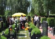 山东进一步推动殡葬改革 禁止农村公益性墓地违规对外销售