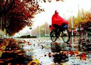 海丽气象吧丨冷空气君驾临潍坊 降雨降温接踵而至