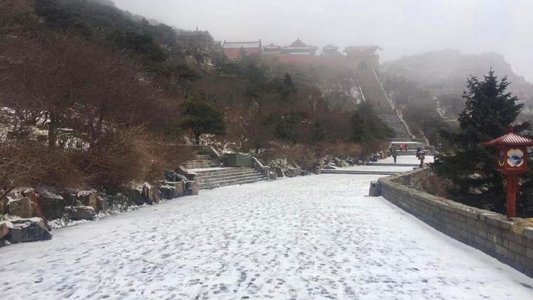 惊喜!立冬前一天初雪降泰山,快来赏美景!