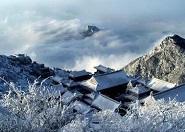 此刻泰山之巅银装素裹松柏成珊瑚岛 天外村因雨雪暂停进山