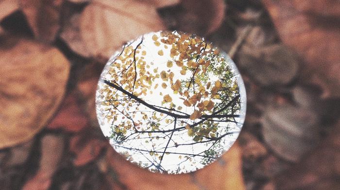 创意摄影丨镜中德州 初冬别样美