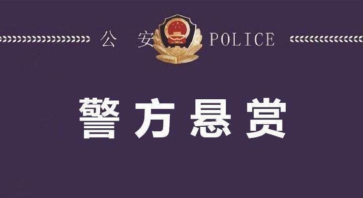 奖励2万元!阳谷警方悬赏通缉两名在逃嫌疑人