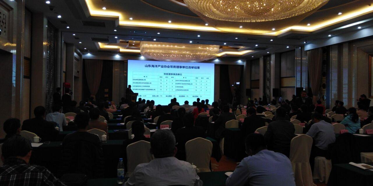 山东海洋产业协会揭牌成立