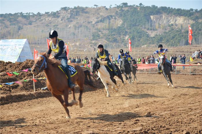 策马奔腾 日照市全国首届马术公开赛在莒县果庄镇举行