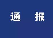 泰安市泰山林场副场长刘涛接受审查调查
