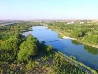 中央第三生态环境保护督察组向山东省转办群众信访举报件情况(第十一批)