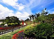 推门就见绿!威海今年新增30个小游园