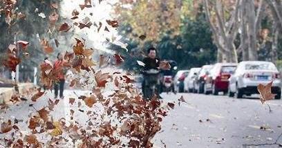 海丽气象吧丨滨州发布降水和大风降温预报 15日有小雨