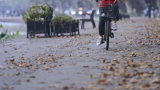 海丽气象吧丨滨州明日阴有小雨转多云 最低温度5℃