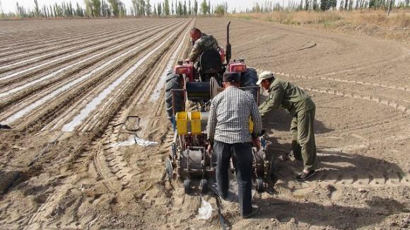 山东:将组织专家赴地市开展农业污染源质控检查
