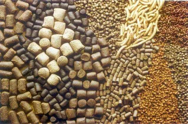 山东:20家饲料生产企业获评定省级示范企业