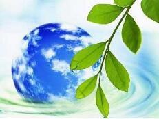 中央第三生态环境保护督察组转办第七批信访举报件办理情况
