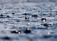 海丽气象吧丨滨州发布降水预报 夜间风力较大