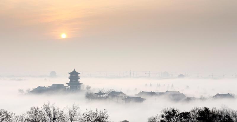 组图|聊城年度图片评选出炉!这里有江北水城最美的风景