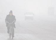 应对重污染天气 山东省7900余家企业停产