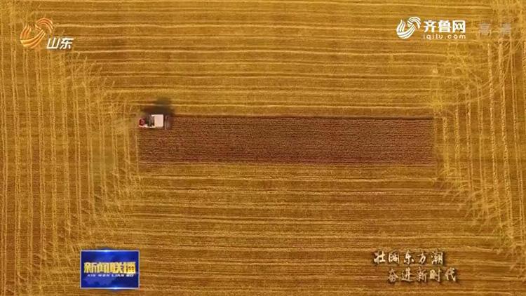 【壮阔东方潮 奋进新时代——庆祝改革开放40年】山东:奏响农村土地改革两部曲