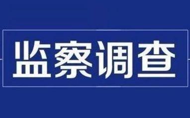 山东美银矿业集团总经理王德坤接受监察调查