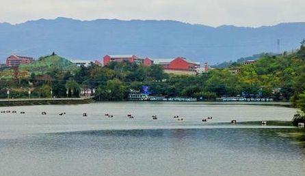 川跃四十年 再瞰新天府丨达州站启航,从莲花湖湿地初见这座城
