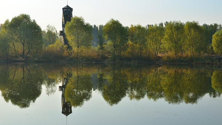 德州公布环境治理排名 前10月宁津庆云分获空气质量和水污染防治第一