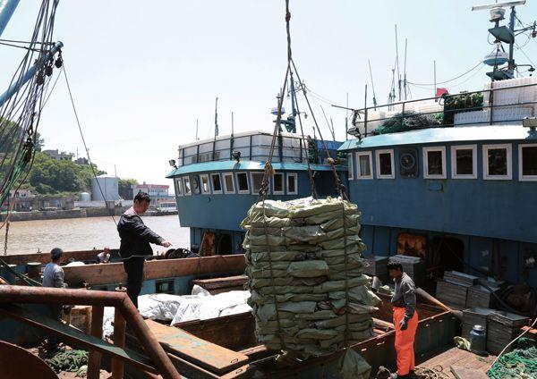 山东将加强渔业安全生产 重点防范商渔船碰撞事故