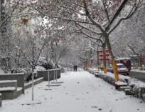 海丽气象吧丨明后天山东有明显降雪 鲁南和鲁中南小到中雪局部大雪