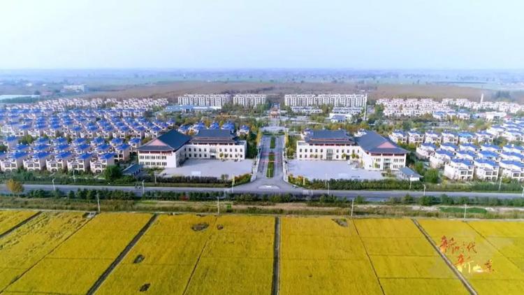 新时代 新山东⑦丨打造乡村振兴齐鲁样板,让农村成为安居乐业的美丽家园