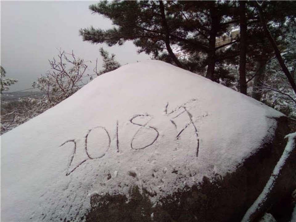 雪后崂山宛如仙境银装素裹 市民冒雪上山赏景(组图)