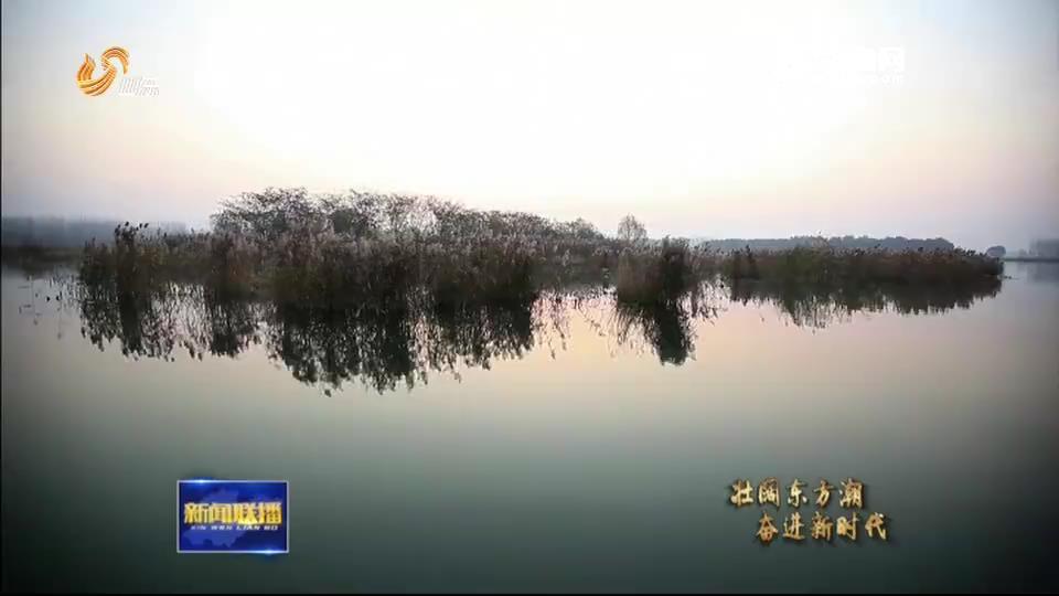 """千顷翠荷、鸟鸣鱼游,三次改造 """"酱油湖""""变成""""生态湖"""""""
