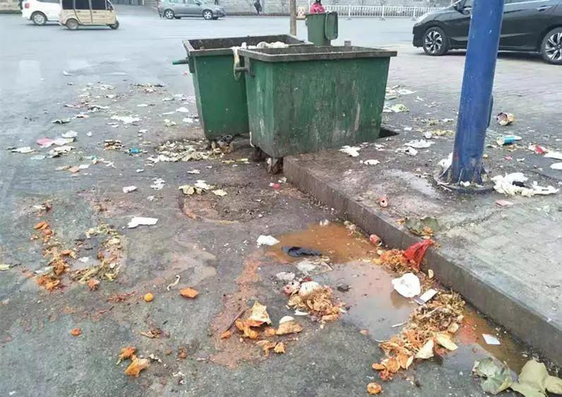 临清一店铺乱倒餐厨垃圾污染环境 被立案调查责令整改