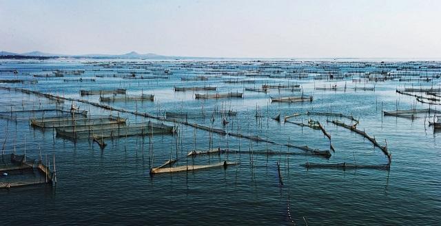 山东公布水产健康养殖示范场第十二批名单和复查合格名单