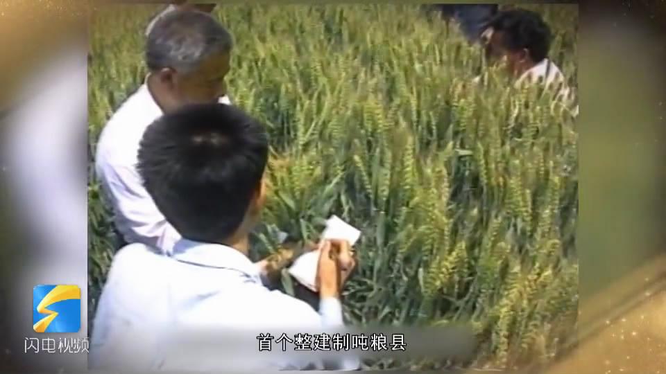 感动山东40人40事|精耕细作历史悠久 1990年桓台建成江北第一个吨粮县