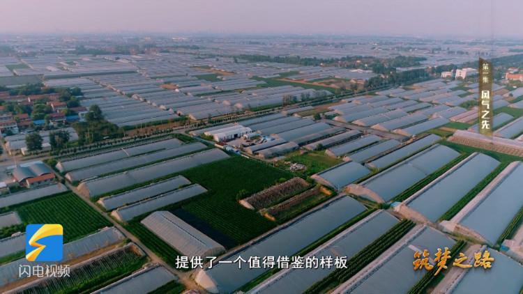 """《筑梦之路》①丨 占领现代农业制高点 寿光成为""""国际蔬菜产业硅谷"""""""