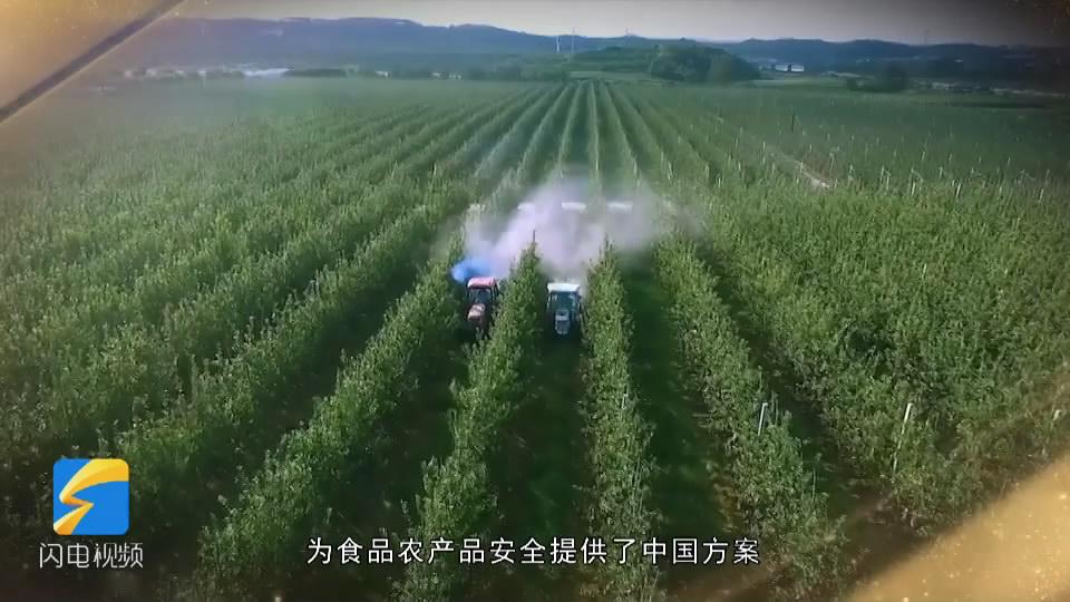 20.山东农产品出口VA0_1[00_00_14][20181218-162746-1].JPG