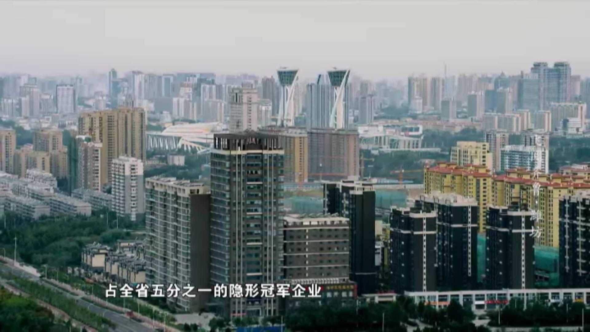 诞生了全省五分之一的冠军企业 这里是潍坊高新产业集聚地丨《飞阅齐鲁》