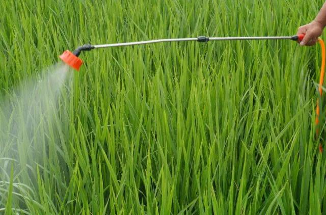 山东省成立农药减量技术专家指导组