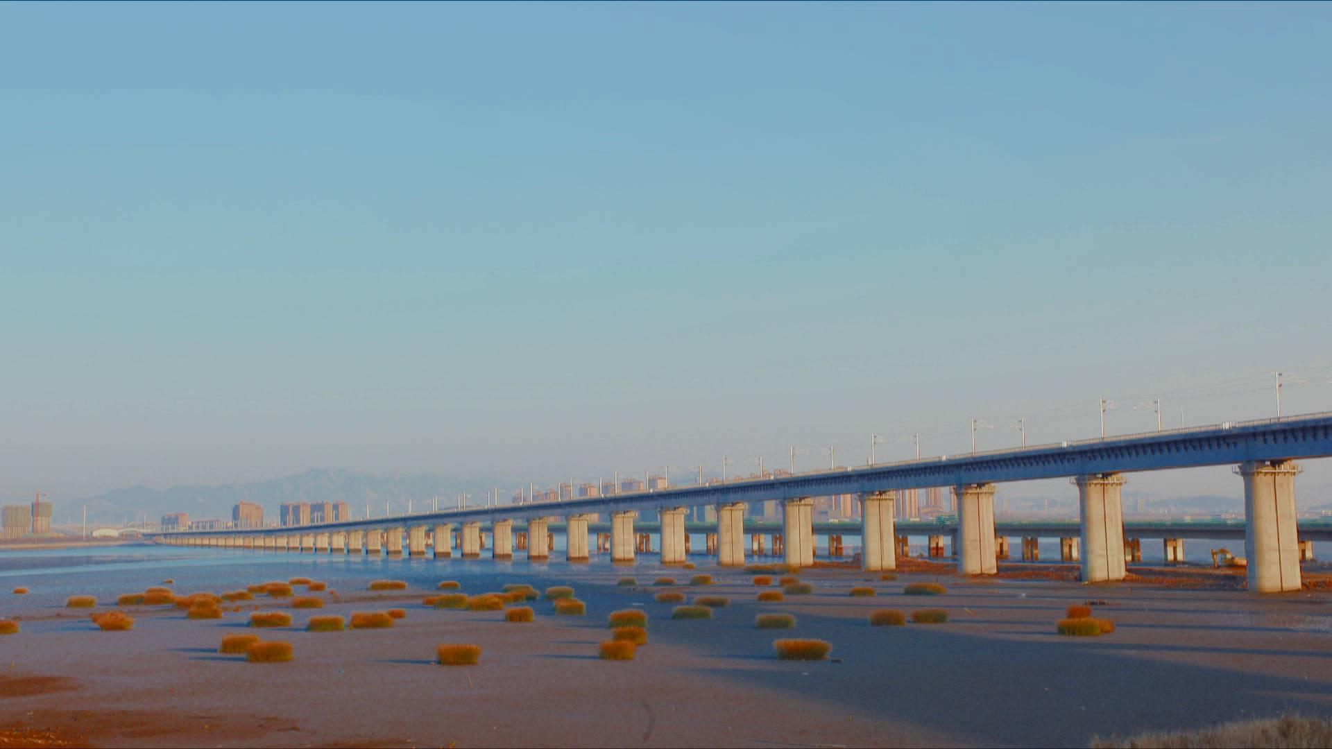 93秒|满足百年设计需求!青盐铁路跨胶州湾特大桥使用的钢筋有玄机