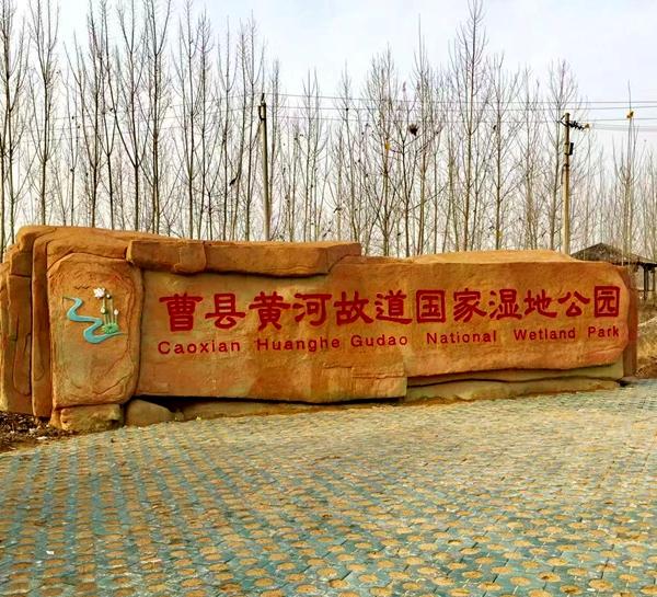 """曹县黄河故道湿地公园正式成为""""国家湿地公园"""""""
