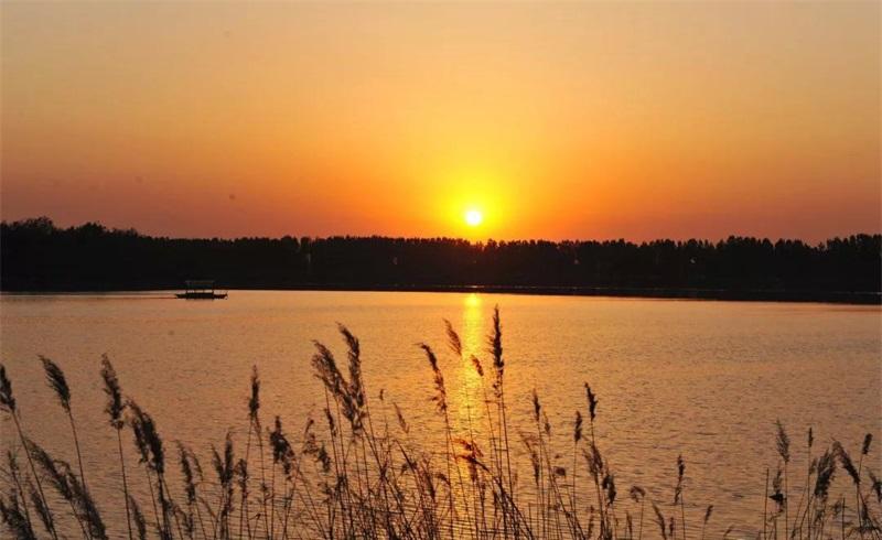 邹城市太平国家湿地公园位于邹城西部,介于白马河与泗河之间,济宁与邹城交接之处,是南水北调东线工程的关键生态节点,也是邹西矿区、济兖邹曲都市区的生态绿心,属于华北平原典型的采煤塌陷新生湿地。湿地公园总面积1002.15公顷,湿地面积428.44公顷,湿地率42.75%。湿地类型主要有河流湿地、湖泊湿地、沼泽湿地和库塘湿地。公园分为5个分区:分别是保育区、恢复重建区、科普宣教区、合理利用区、管理服务区。公园内生物资源丰富,具有典型的北方湿地特征,有植物94科400种、兽类6科11种、两栖类动物4科6种、爬
