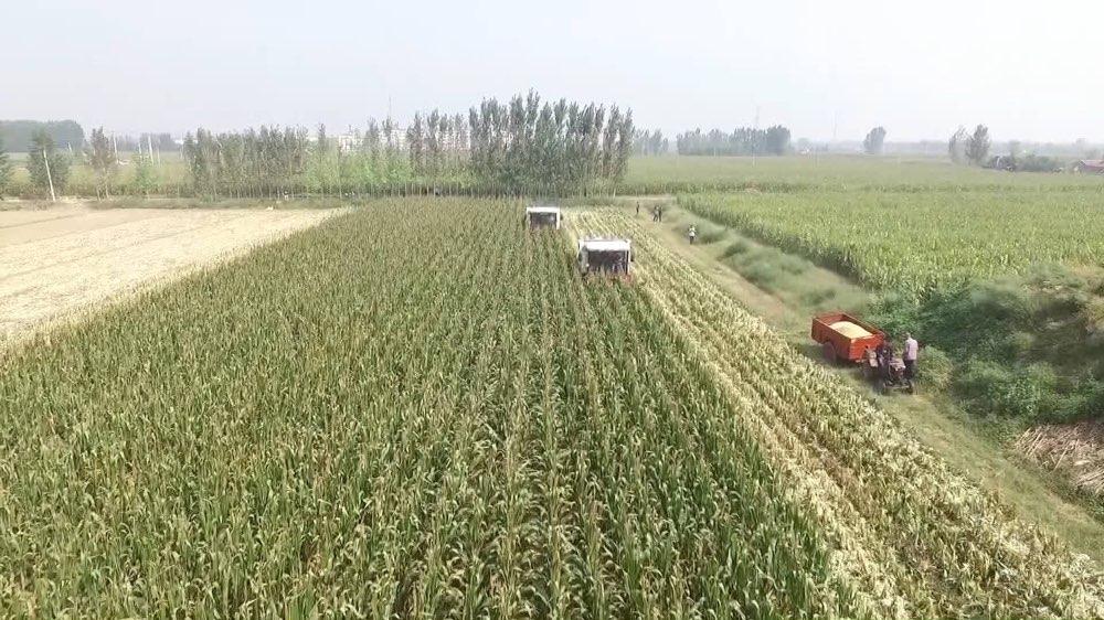 每周质量报告|一个品牌农机企业的转型升级之路
