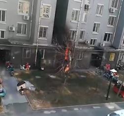 39秒丨淄博一饭店突然起火 四邻及时出手协力扑救