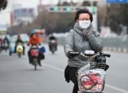 海丽气象吧丨潍坊东北部将迎来大风天气 海区阵风或将达到8级