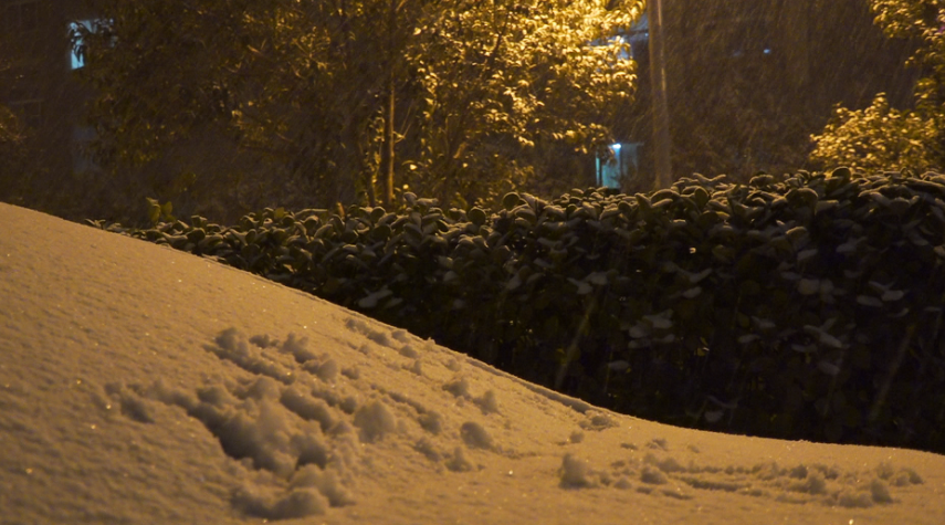 下雪了!枣庄发布道路结冰黄色预警信号