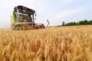 农作物生产机械化领先 潍坊这2个县市成国家级示范县