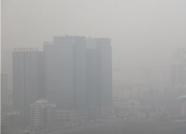 泰安发布大雾橙色预警!局部地区能见度小于50米