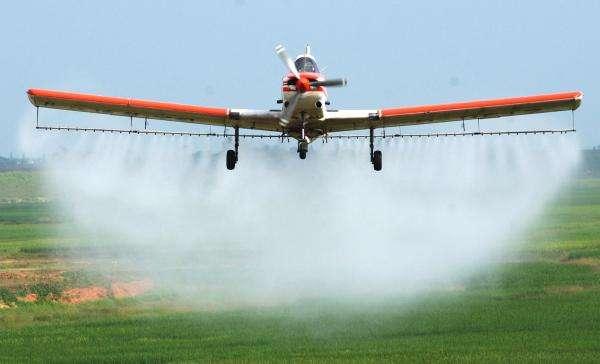 2020年山东农产品农药残留监测合格率稳定在96%以上