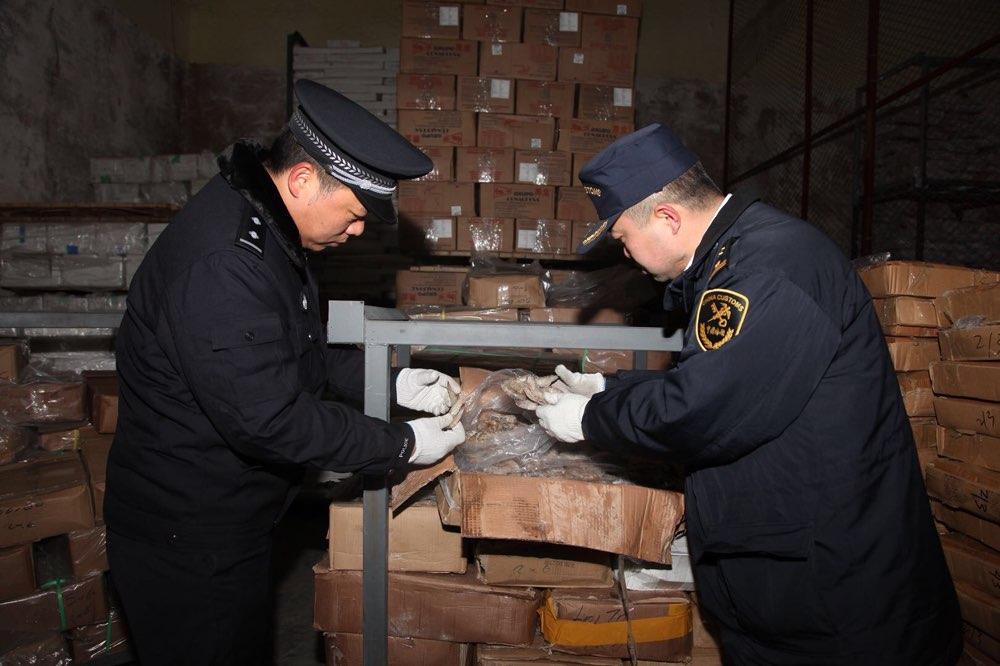 青岛海关破获案值2亿元走私冻水产品案