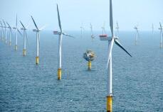 山东探索海洋牧场与海上风电融合发展 目前已基本具备试验条件